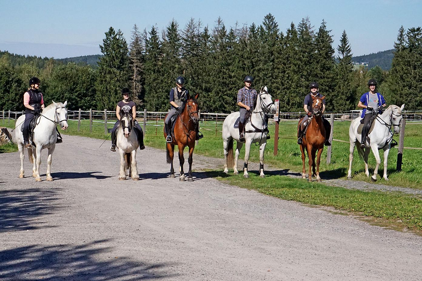 Personen reiten auf Pferden